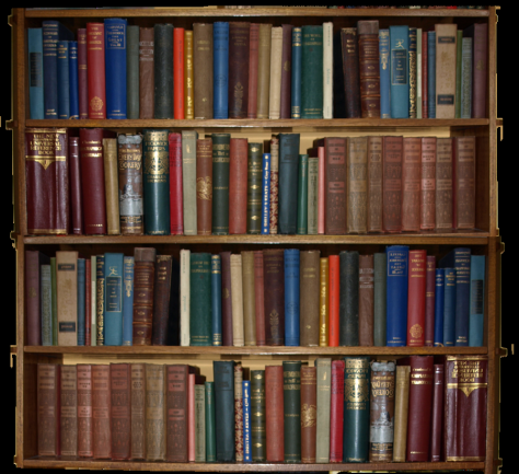 bookcase_by_marmaladepip